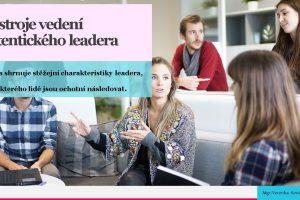 Nástroje vedení